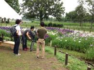水元公園でのロケ風景